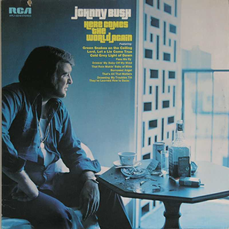 Johnny Bush - Here Comes The World Again (Country Music vinyl record for sale)