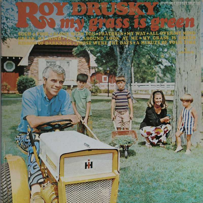 Roy Drusky - My Grass Is Green (Country Music vinyl record for sale)